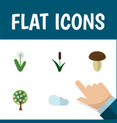 Flat icon nature set of tree floral champignon vector