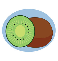 fresh kiwi on white background vector image