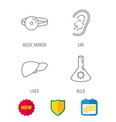 Lab bulb medical mirror and liver organ icons vector