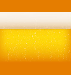 lager beer background with white foam vector image