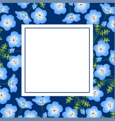 nemophila baby blue eyes flower on indigo banner vector image