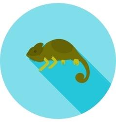 Pet Chameleon vector