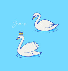 swan design vector image