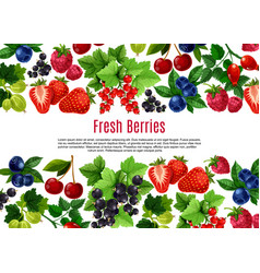 berry and fruit cartoon poster template design vector image