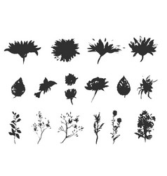floral set collection with leavesspring vector image vector image