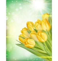 Bouquet yellow tulips eps 10 vector
