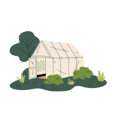 greenhouse with green plants rural landscape vector image