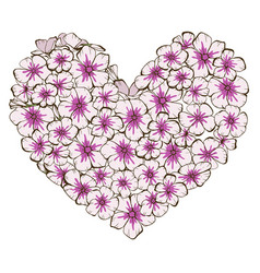 Heart pink and violet phlox flowers isolated vector