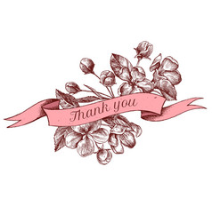 ribbon design of apple flowers with thank you sing vector image