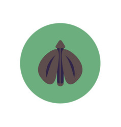 Stylish icon in color circle flying beetle vector