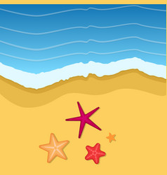 summer time background with flops in sand vector image