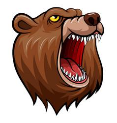 Wild bear head mascot vector