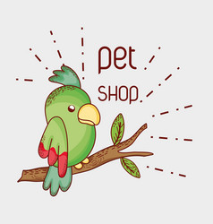 Parrot on tree branch pet shop vector