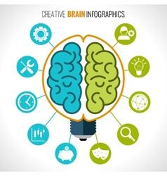 Creative brain infographics vector image vector image
