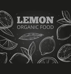 sketch leaves and lemons blackboard background vector image vector image