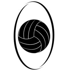 Volleyball 3 vector image vector image