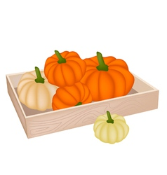 A pile of pumpkins in wooden box vector