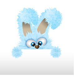 Blue easter bunny is looking out fluffy rabbit vector