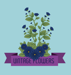 cute flowers plants with leaves and ribbon vector image