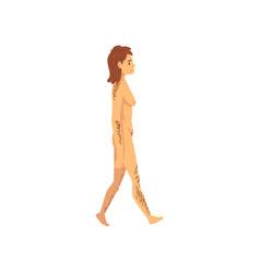 Female cro magnon biology human evolution stage vector