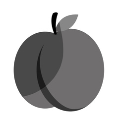 fresh fruit flat isolated icon vector image vector image