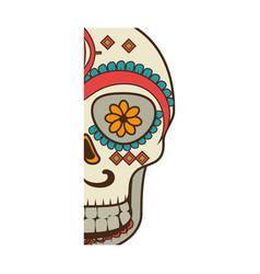 half piece decorative ornamental sugar skull vector image