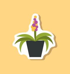 paper sticker on stylish background hyacinth vector image