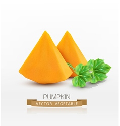 pumpkin slices isolated on white background vector image