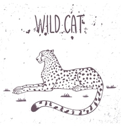 Cheetah wild cat vector