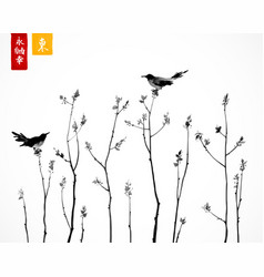 Two black birds on trees branches on white vector