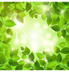 Spring frame of green leaves vector image vector image