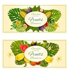 Tropical garden fruits banners vector image