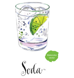 soda glass with citrus segment and ice cubes vector image