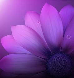 Gerber Flower Background vector image
