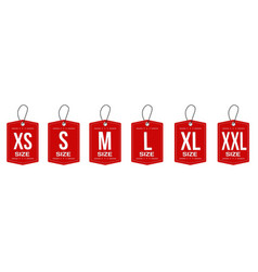 collection clothing size labels or price tags vector image