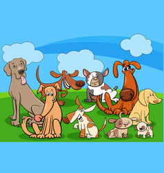 dog characters group cartoon vector image