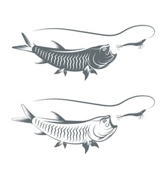 Tarpon fish and lure template vector