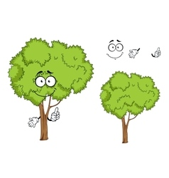 Cartoon isolated green tree character vector image vector image