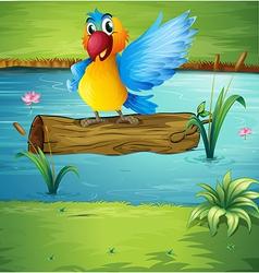 Cartoon Parrot vector image
