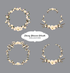 cherry blossom wreaths collection vector image