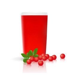 Glass cranberry juice cranberries vector