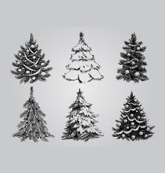 set dreawn christmas trees vector image