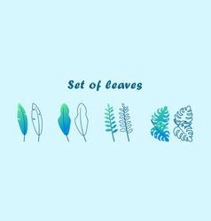 set wild tropical leaves modern flat vector image