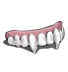 Vampire teeth on white background vector