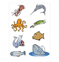 sea life collection vector image vector image