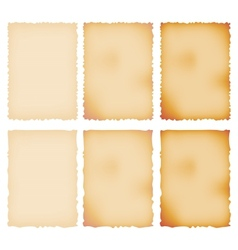 Burnt Paper Set Torn Border Isolated On White vector image vector image