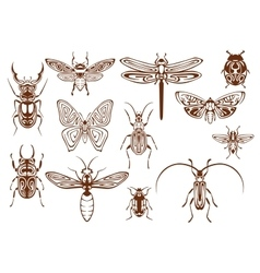 Brown tribal insects for tattoo or mascot design vector image vector image