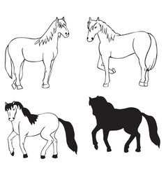 Horse on white background vector