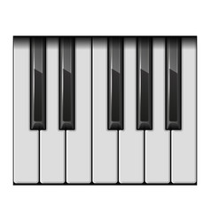 piano one octave keys vector image