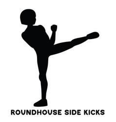 Roundhouse side kicks side kick sport exersice vector